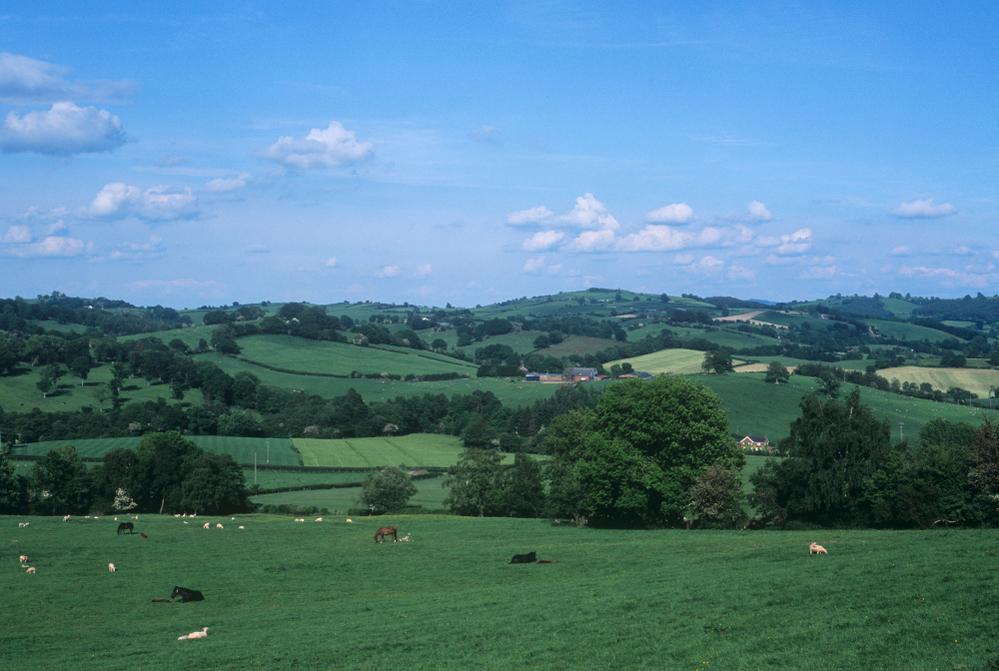 Tregynon mid Wales
