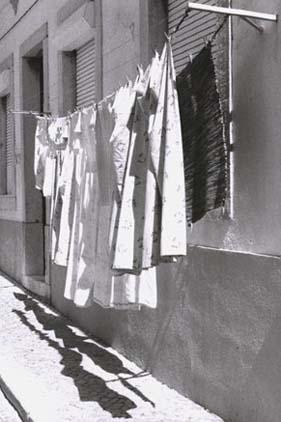 Cobble Shadows