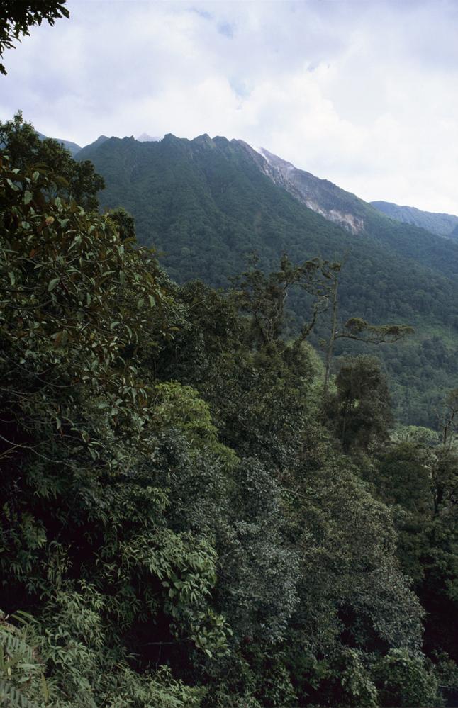 Sibayak Volcano, near Berastagi, Sumatra Sumatra