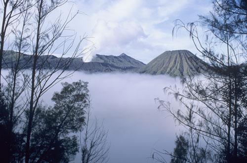 Bromo Volcano, Java