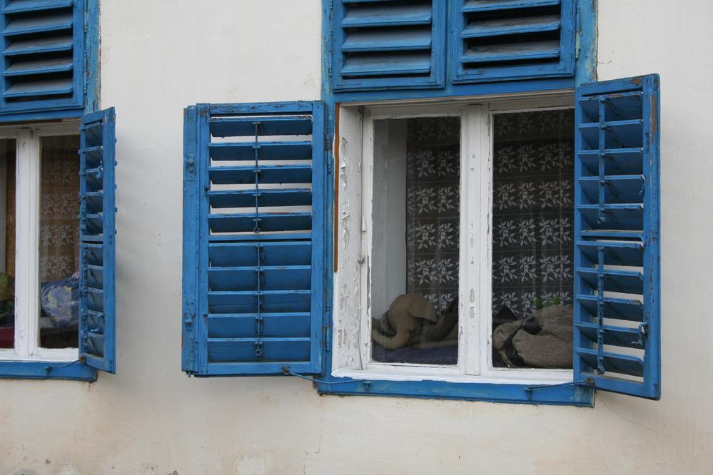 Windows of cottage in Zebegeny