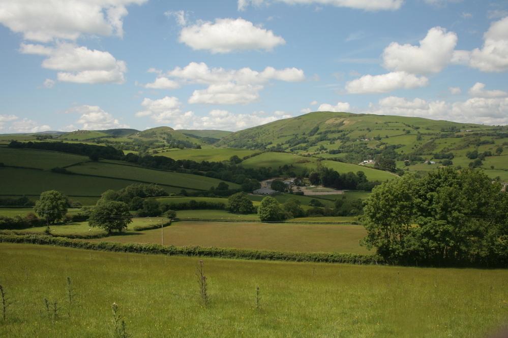 Fields near Van / Y Fan, Llanidloes